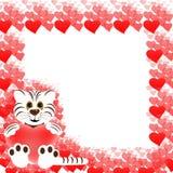 белизна тигра сердец рамки Стоковое Изображение RF