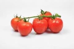 белизна томата вишни предпосылки Стоковое фото RF