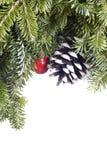 белизна украшения рождества вечнозеленая стоковые фотографии rf