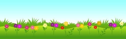белизна цветка предпосылки изолированная травой Стоковая Фотография RF