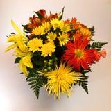 белизна цветка предпосылки 6 расположений Стоковые Фото
