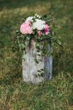белизна цветков розовая Стоковое Фото