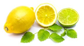 белизна цитрусовых фруктов изолированная Стоковое фото RF