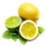 белизна цитрусовых фруктов изолированная Стоковое Фото