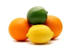 белизна цитрусовых фруктов изолированная Стоковое Изображение RF