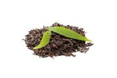 белизна чая pu листьев erh свежая Стоковая Фотография