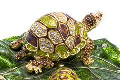 белизна черепахи shui feng предпосылки Стоковая Фотография RF