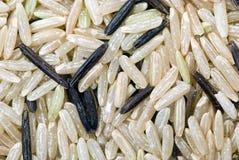 белизна черного риса макроса непропашная Стоковые Изображения