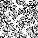 белизна черной вишни предпосылки безшовная Стоковое фото RF