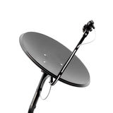 белизна черной тарелки спутниковая Стоковые Изображения RF