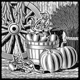 белизна черной хлебоуборки амбара ретро Стоковая Фотография RF
