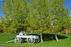 белизна buckboard зеленая стоковое фото rf