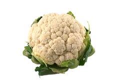 белизна cauliflower предпосылки Стоковая Фотография RF