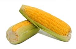 белизна corns 2 предпосылки Стоковые Изображения