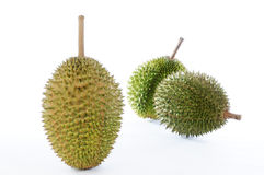 белизна durian предпосылки Стоковое Фото