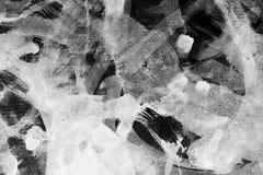 белизна grunge предпосылки черная Стоковые Фото