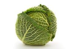 белизна savoy капусты предпосылки изолированная головкой Стоковое Изображение RF