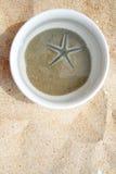 белизна starfish чашки Стоковое Изображение