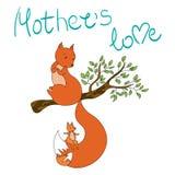Белка и маленькая плюшка на ветви мать s влюбленности Стоковая Фотография