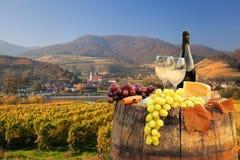 Белое вино с бочонком на винограднике в Wachau, шпице, Австрии стоковая фотография