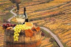 Белое вино с бочонком на винограднике в Wachau, шпице, Австрии стоковое фото rf