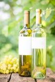 Белое вино Стоковые Фото