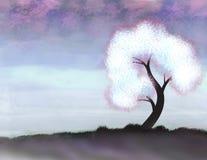 Белое дерево Стоковое Изображение