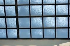 Белое дерьмо птицы, помёт птицы на стеклянной крыше, пакостное и probl Стоковое Изображение RF
