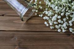 Белое дыхание ` s младенца на деревянной предпосылке Стоковое Изображение