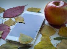 Белое Smartphone Стоковые Фото