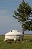 белое yurt Стоковое Изображение