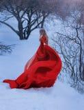 Белокурая дама не показывает ее сторону в фото, одетом в шикарном изумительном красном чудесном платье с длинным поездом стоковые изображения