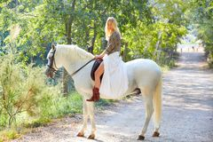 Белокурая женщина девушки ехать белая лошадь в следе Стоковое Изображение RF