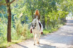 Белокурая женщина девушки ехать белая лошадь в следе Стоковое Фото