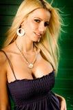 белокурая женщина модели способа расщепления сексуальная показывая Стоковая Фотография
