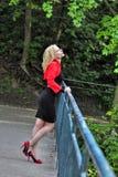 Белокурая женщина Стоковые Фотографии RF