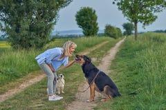 Белокурая усмехаясь женщина штрихуя большую собаку во время прогулки Стоковая Фотография RF