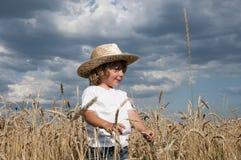 белокурое поле мальчика Стоковая Фотография