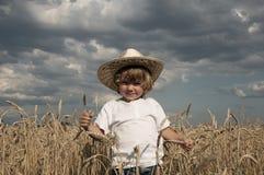 белокурое поле мальчика Стоковая Фотография RF