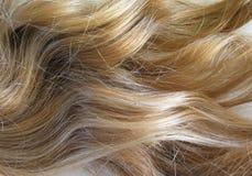 белокурые волосы Стоковая Фотография