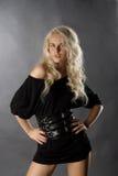 белокурые сексуальные женщины Стоковая Фотография