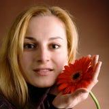 белокурый красный цвет цветка Стоковое Изображение RF