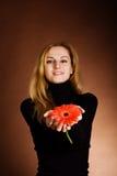 белокурый красный цвет цветка Стоковое фото RF