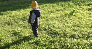 Белокурый мальчик малыша идя в траву видеоматериал
