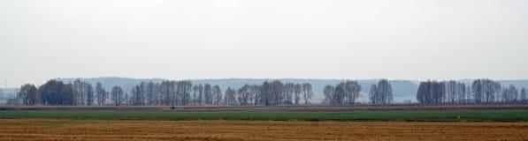 Белорусский ландшафт Дорога и деревня вдоль meliorative канала Поля в апреле весной Стоковая Фотография RF