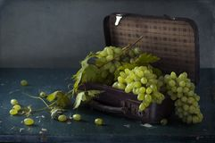 Белые виноградины, бутылки вина и бокал вина Стоковое Изображение RF