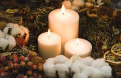 Белые горящие свечи рождества с хворостинами сосны Стоковое фото RF