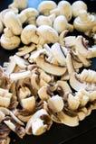 Белые грибы как ингридиенты пиццы Стоковые Фото
