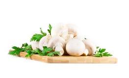 Белые грибы на белой предпосылке Стоковое Фото