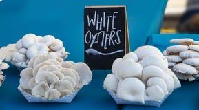 Белые грибы устрицы показанные для продажи на довольно голубой скатерти на рынке фермеров стоковое изображение rf